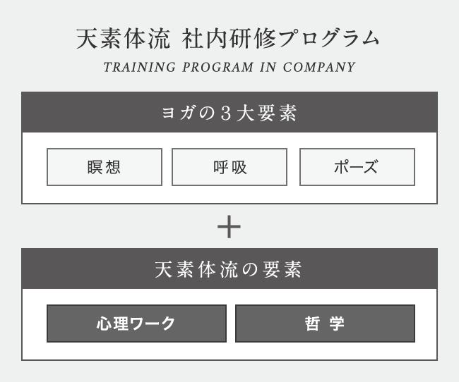 天素体流 社内研修プログラム